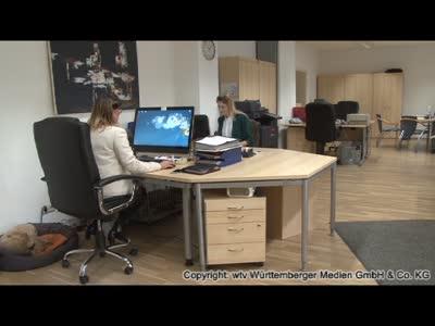 Dr. Hybner Immobilien GmbH Immobilienbüro