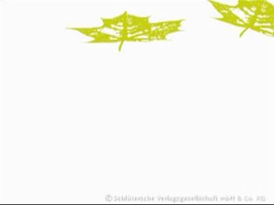 Hanseatic Treework Olav Johswich u. Stefan Schwarz GbR
