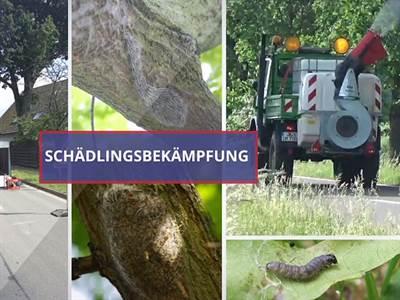 Enviro Pest Control GmbH Yvonne Arendt Dipl. Ing.(FH) IHK-geprüfte Schädlingsbekämpferin