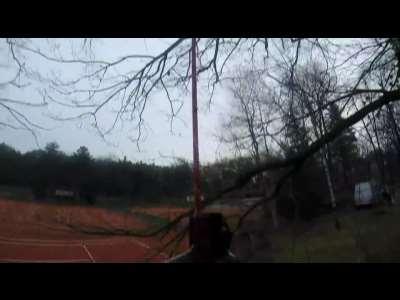 Baumdienst Harzer