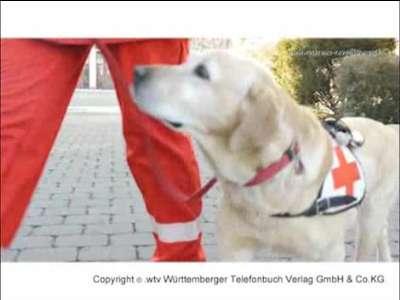 Deutsches Rotes Kreuz DRK - Kreisverband Ravensburg e.V.