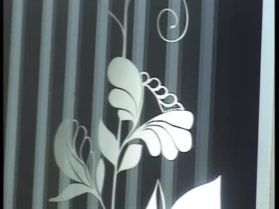 Video-Vorschau Bild